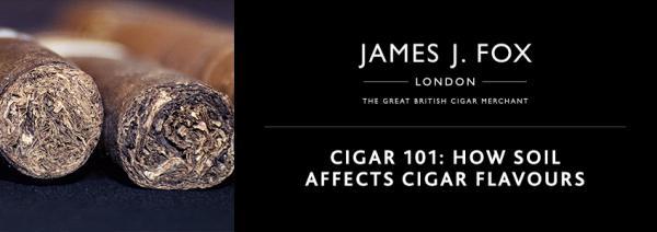 Cigar 101: How Soil Affects Cigar Flavours