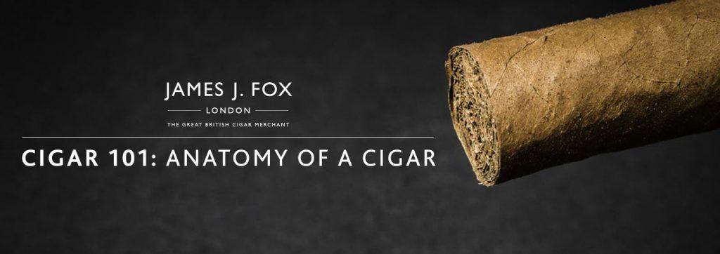 Cigar 101: Anatomy of a Cigar | JJ Fox Blog