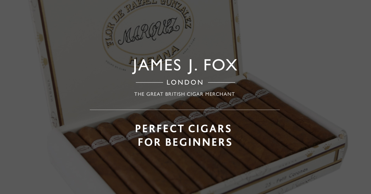 Perfect Cigars for Beginners